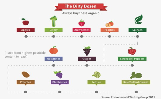 The Dirty Dozen Infographic