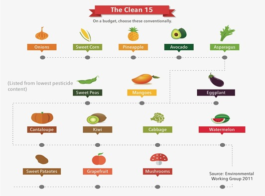 The clean 15 infographic